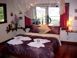 Daintree Cloud 9 - Accommodation 4U