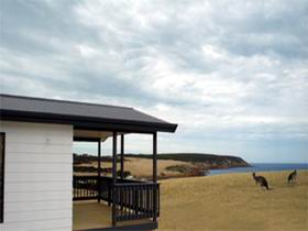 Waves and Wildlife - Accommodation 4U