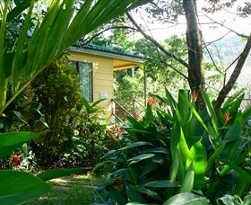 Daintree Valley Haven - Accommodation 4U