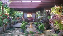 Blossoms Bed and Breakfast - Accommodation 4U