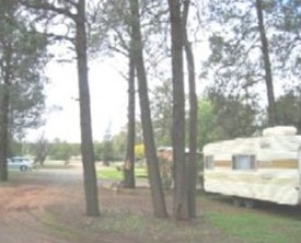 The Kelpie Caravan Park - Accommodation 4U