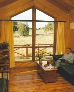 Wisteria Cottage - Accommodation 4U