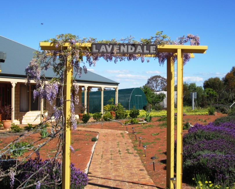 Lavendale Farmstay and Cottages - Accommodation 4U