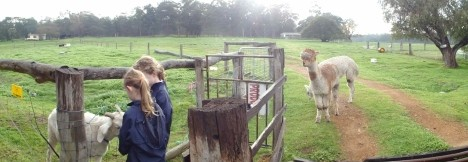 Boronia Farm Farmstay - Accommodation 4U