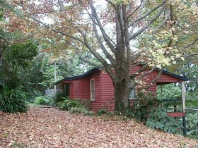 Turkeys Nest Rainforest Cottage - Accommodation 4U