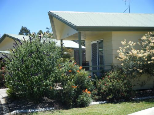 Pepper Tree Cabins - Accommodation 4U