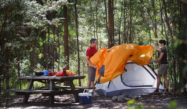 Bald Rock campground and picnic area - Accommodation 4U