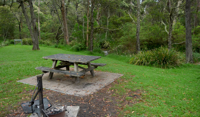 Chaelundi campground - Accommodation 4U