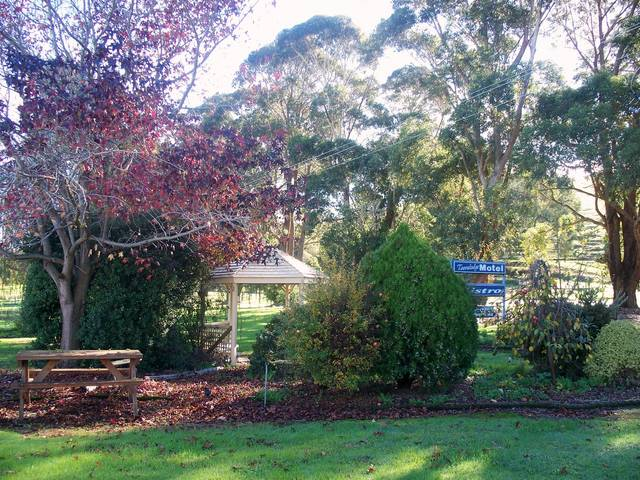 Toora Lodge Motel - Accommodation 4U