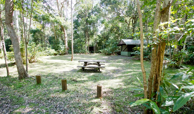 Iron Pot Creek campground - Accommodation 4U