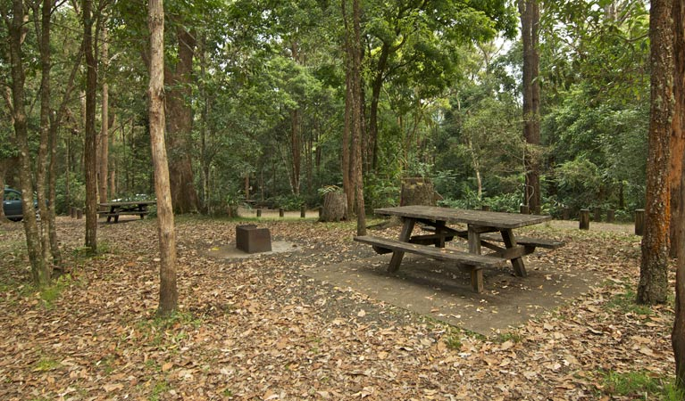 Sheepstation Creek campground - Accommodation 4U
