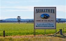 The Ardlethan Kelpie Caravan Park - Accommodation 4U