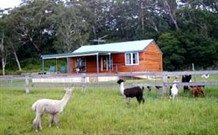 Moorallie Cottage Farm Stay - Accommodation 4U