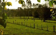 Stone Cottage Mittagong - Accommodation 4U