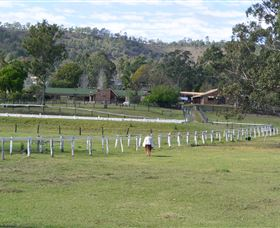 Kellarni Downs Farmstay-Scenic Rim - Accommodation 4U