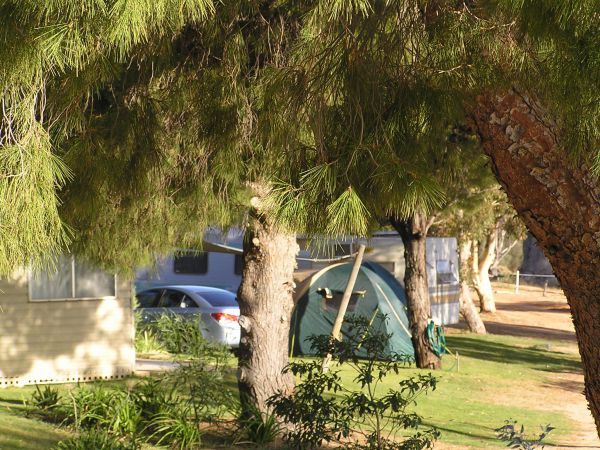 Barmera North Lake Caravan Park - Accommodation 4U