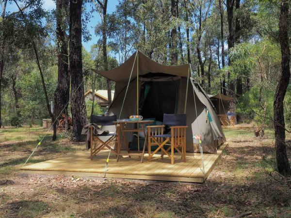 Tall Trees Camping on the Great Ocean Road - Accommodation 4U