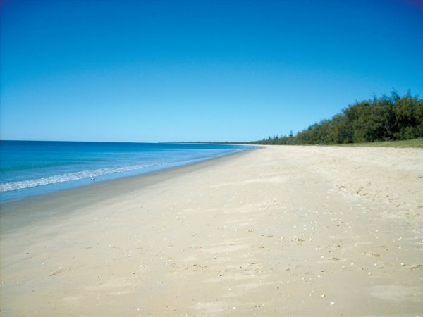 Woodgate Beach Tourist Park - Accommodation 4U
