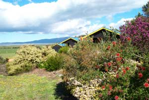 Black Cockatoo Cottages - Accommodation 4U